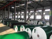綠色PVC輕型輸送帶