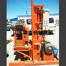 工程地基钻孔机 地表回转式钻机 家用钻机