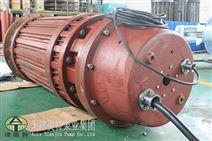 120度能使用的潜水电动机_津奥特品牌