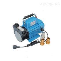 DYB型礦山機械發電機組加油自吸油泵