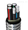 ZA-AC90(YJHLV8)铠装铝合金电缆