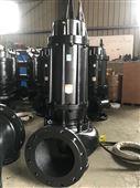 機械密封大流量污水泵廠家直銷雨辰泵業