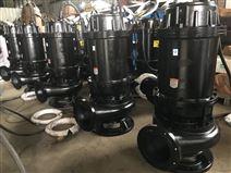 雨辰泵業 大流量鑄鐵污水泵生產廠家