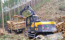 江西抓木机市场需求下的品牌比拼