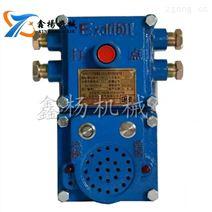 礦用本質安全型KXH127聲光組合信號器
