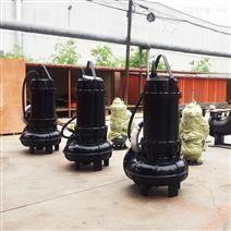 化工園區泵站用WQ排污泵