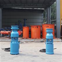 简易式轴流泵价格参考 潜水泵厂家制造